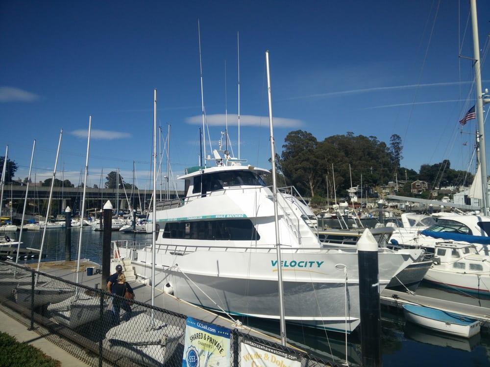Stagnaro fishing trips 21 photos 38 reviews boat for Santa cruz fishing