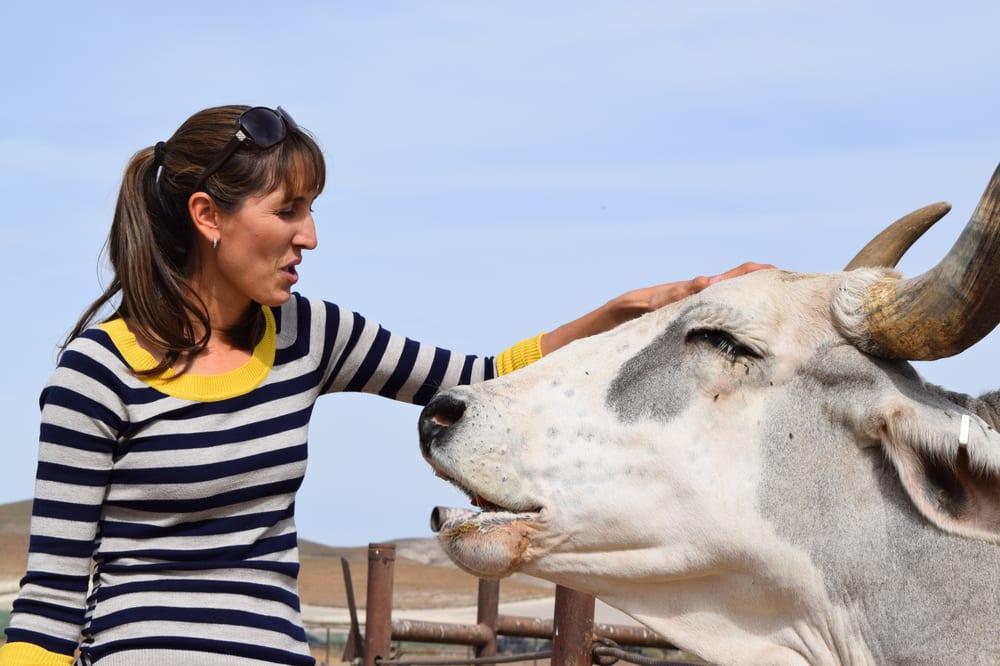 Creston Large Animal Veterinary Services: Creston, CA