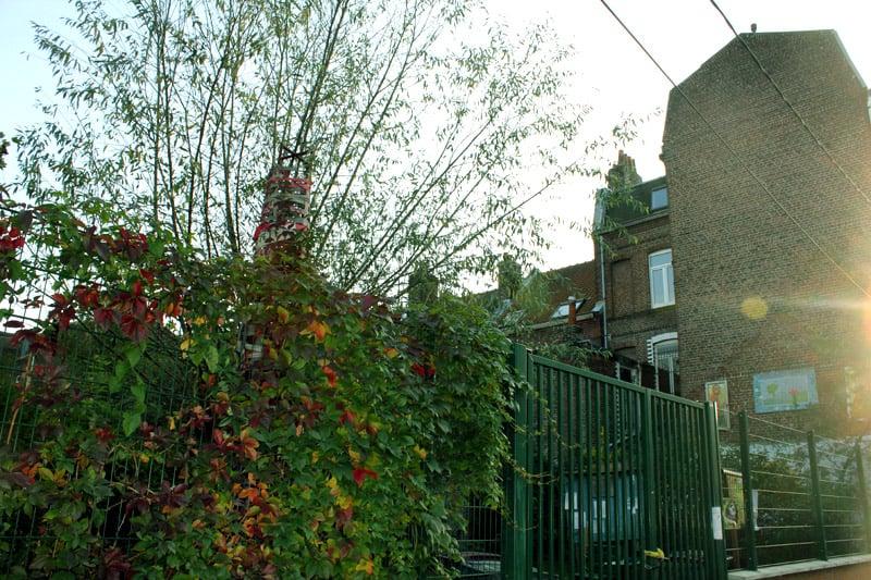 jardin communautaire des retrouvailles park forests 11 rue montesquieu moulins lille. Black Bedroom Furniture Sets. Home Design Ideas