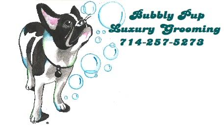 Bubbly Pup