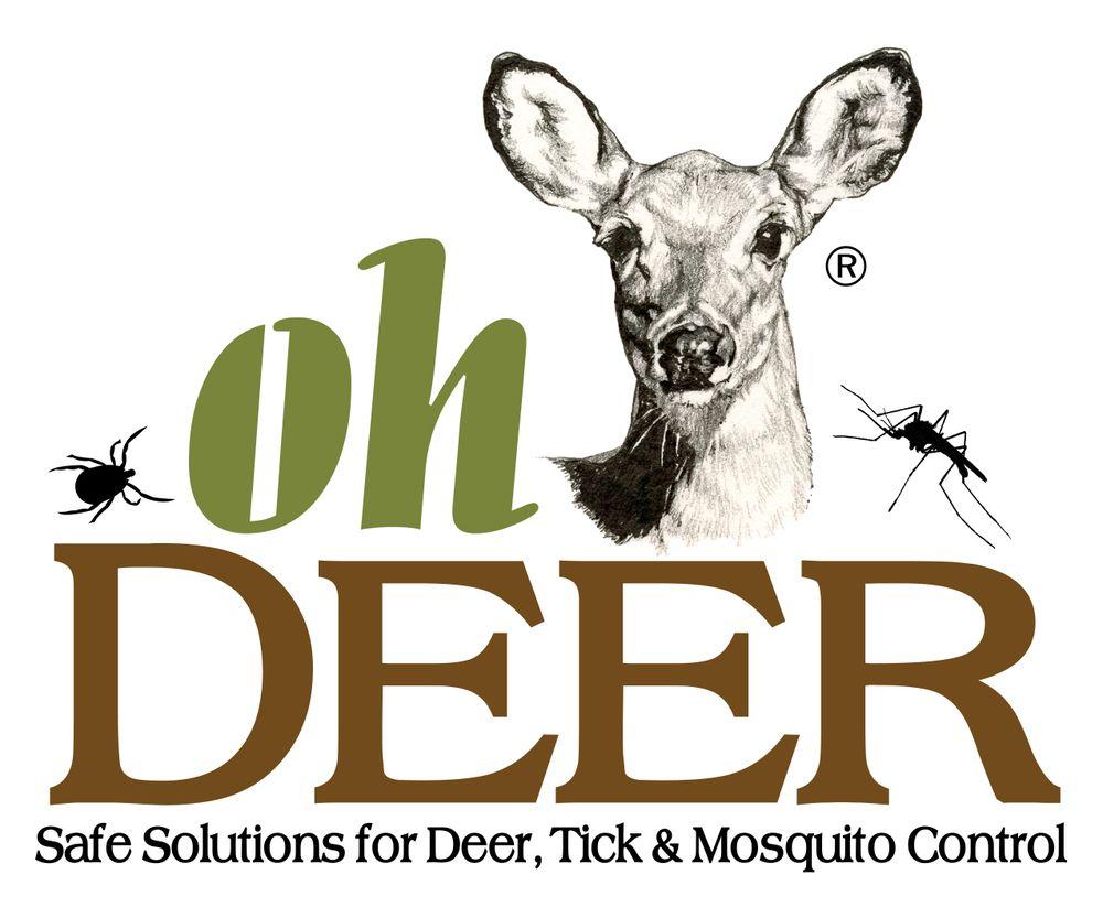Oh Deer Nantucket: 4 Reacher Ln, Nantucket, MA