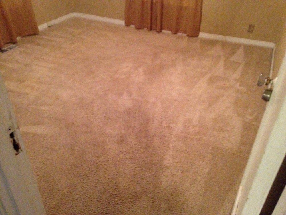 Shepherd Carpet Cleaning: 4676 Commercial St SE, Salem, OR