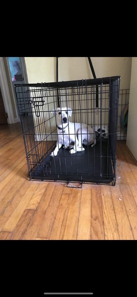Barks on Bay Grooming Salon: 126 Bay Ave, Highlands, NJ