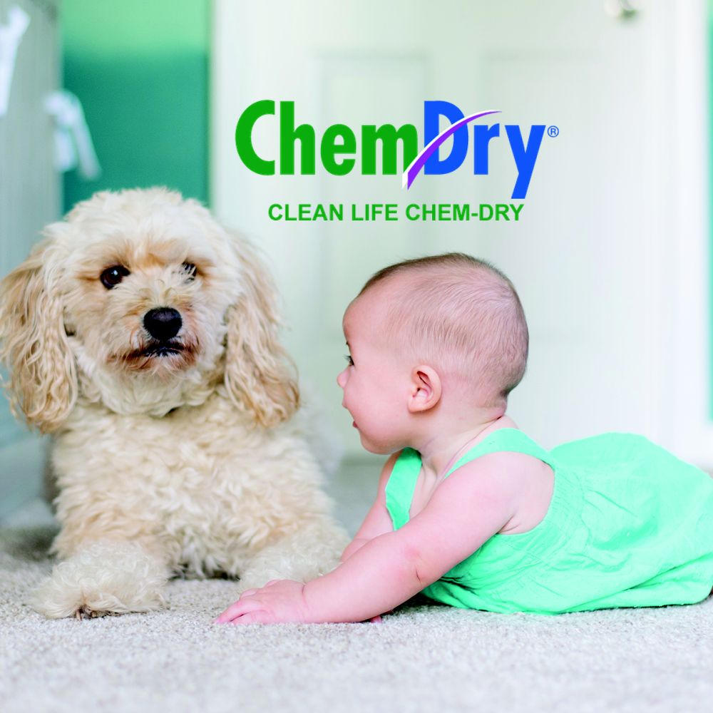 Clean Life Chem-Dry: Baiting Hollow, NY