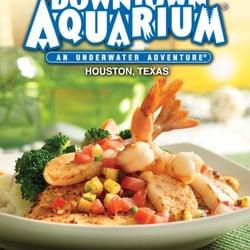 Photo Of Downtown Aquarium Houston Tx United States
