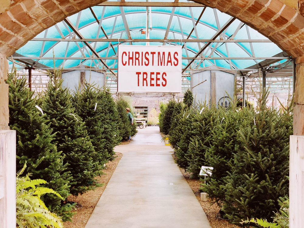 Fossil Creek Tree Farm & Nursery