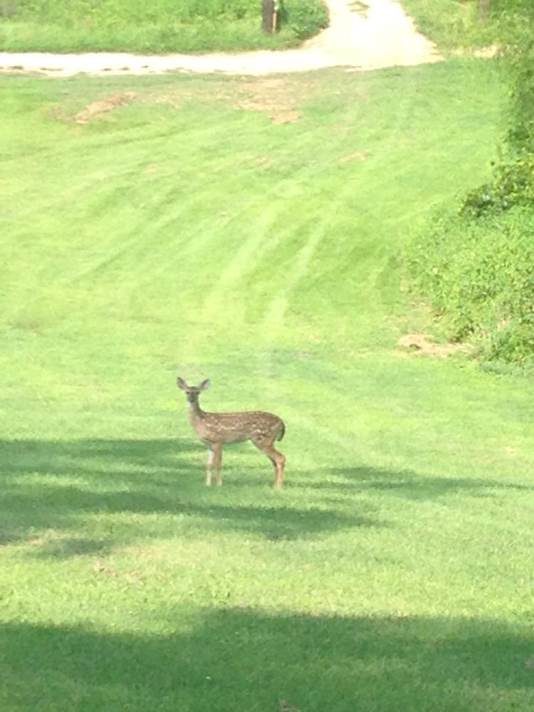 Social Spots from Southern Hills Golf Course