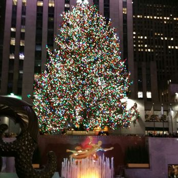 Rockefeller Center Christmas Tree - 556 Photos & 162 Reviews ...