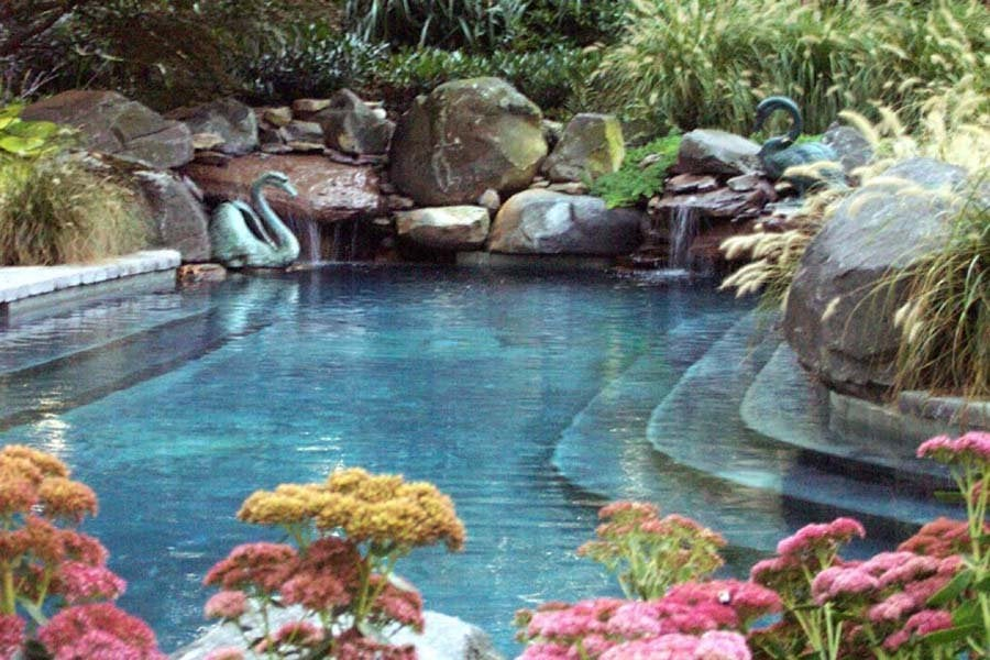 Natural looking in ground pools 100k Photo Of Creative Land Design Centreville Md United States Custom Natural In Yelp Custom Natural In Ground Concrete Swimming Pool In Grasonville Md