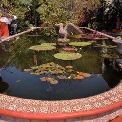 Photo Of Vallarta Botanical Gardens   Cabo Corrientes, Jalisco, Mexico