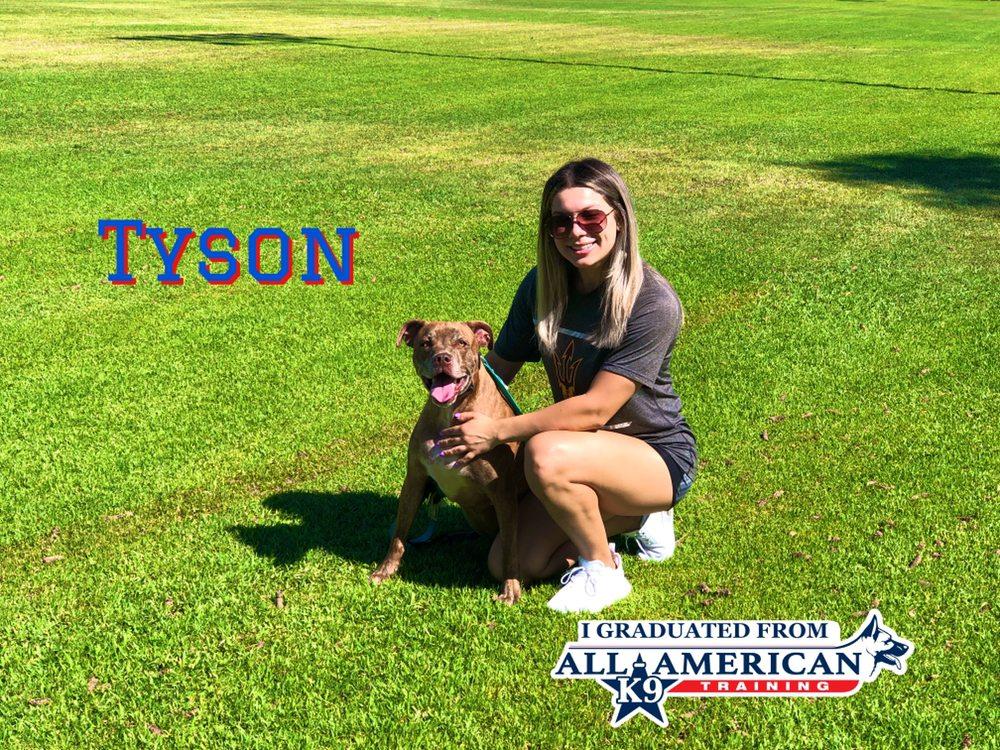 All-American K-9 Dog Training