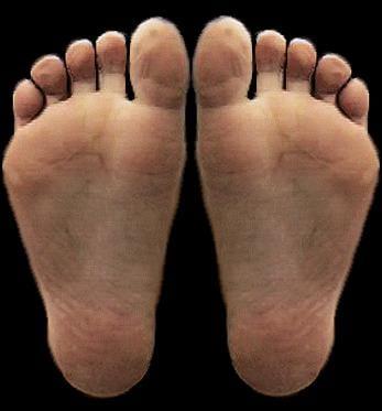 ANP Foot & Ankle Clinic: 6053 SE 14th St, Des Moines, IA