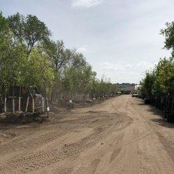 Photo Of Harding Nursery Colorado Springs Co United States