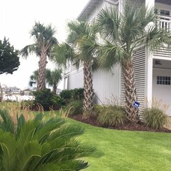 Wild Magnolia Designs Landscape Architects Wilmington Nc