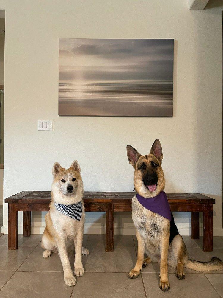 Paw My Heart Pet Spa: Linden, CA
