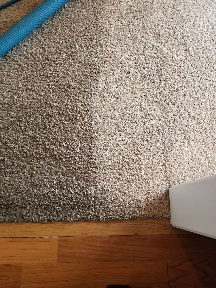 Lee S Carpet Cleaning 12 Reviews Carpet Cleaning 519