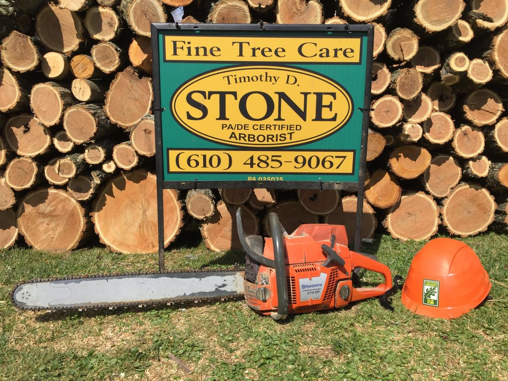 Fine Tree Care: 1515 Springhill Dr, Aston, PA
