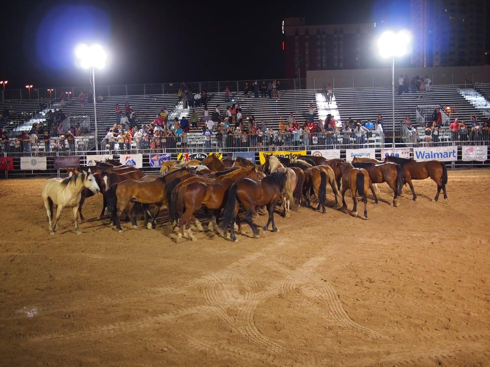 Wrangler National Finals Rodeo Amateur Sports Teams