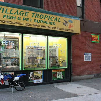 Village tropical fish closed 11 reviews pet shops for Fishing stores nj