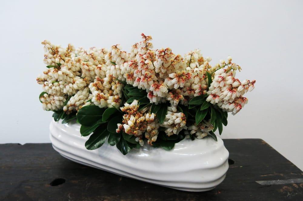 Linden Grove Floral Studio