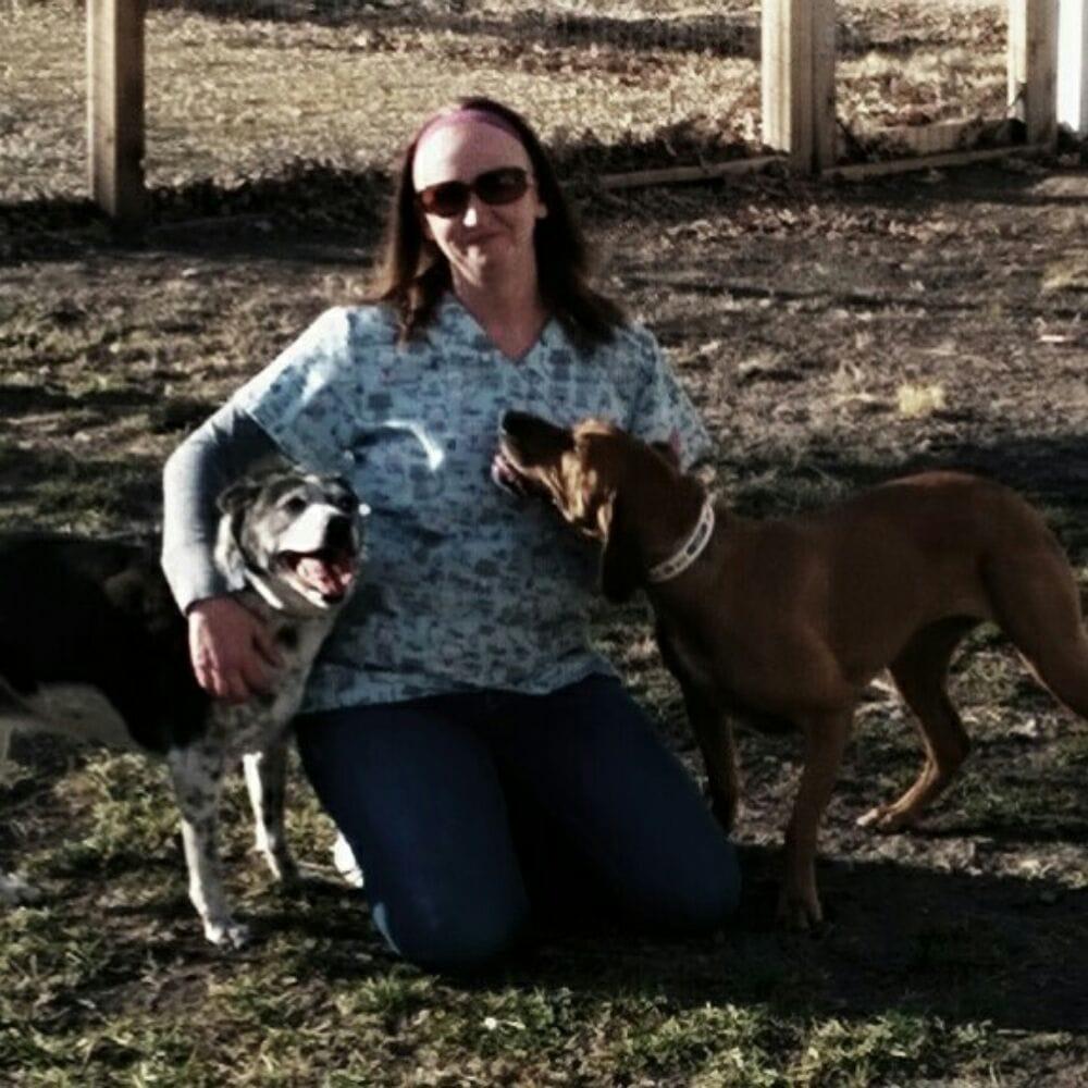 Dickey's Pet Sitting: 3777 Pecan Dr, Saint George, KS