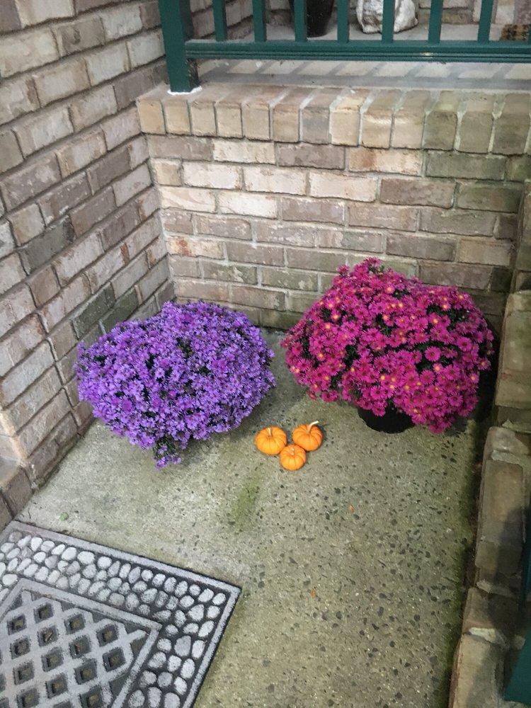 Blooms at Belle Mead: 1980 US Hwy 206, Belle Mead, NJ