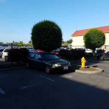 Photo Of Americas Best Value Airport Inn Seatac Wa United States Obviously