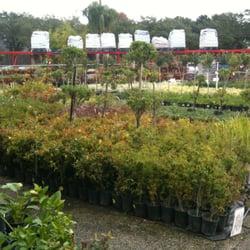 Houston Garden Center 12 Reviews Nurseries Gardening 525 W .