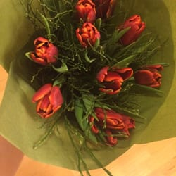regeringsgatans blommor stockholm