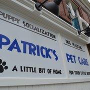 Patrick S Pet Care 17 Photos Amp 80 Reviews Dog Walkers