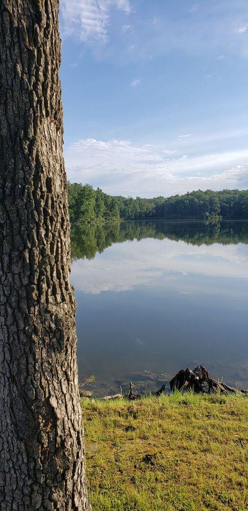 Lake Campalot: 13520 Community Lake Rd, Percy, IL