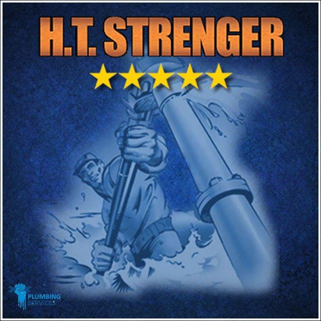 HT Strenger: 28915 N Herky Dr, Lake Bluff, IL