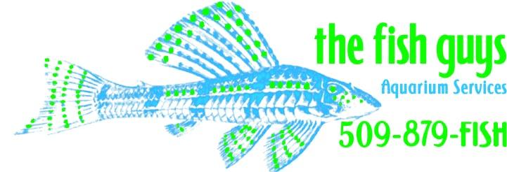 The Fish Guys: 23509 E Maxwell Ct, Liberty Lake, WA
