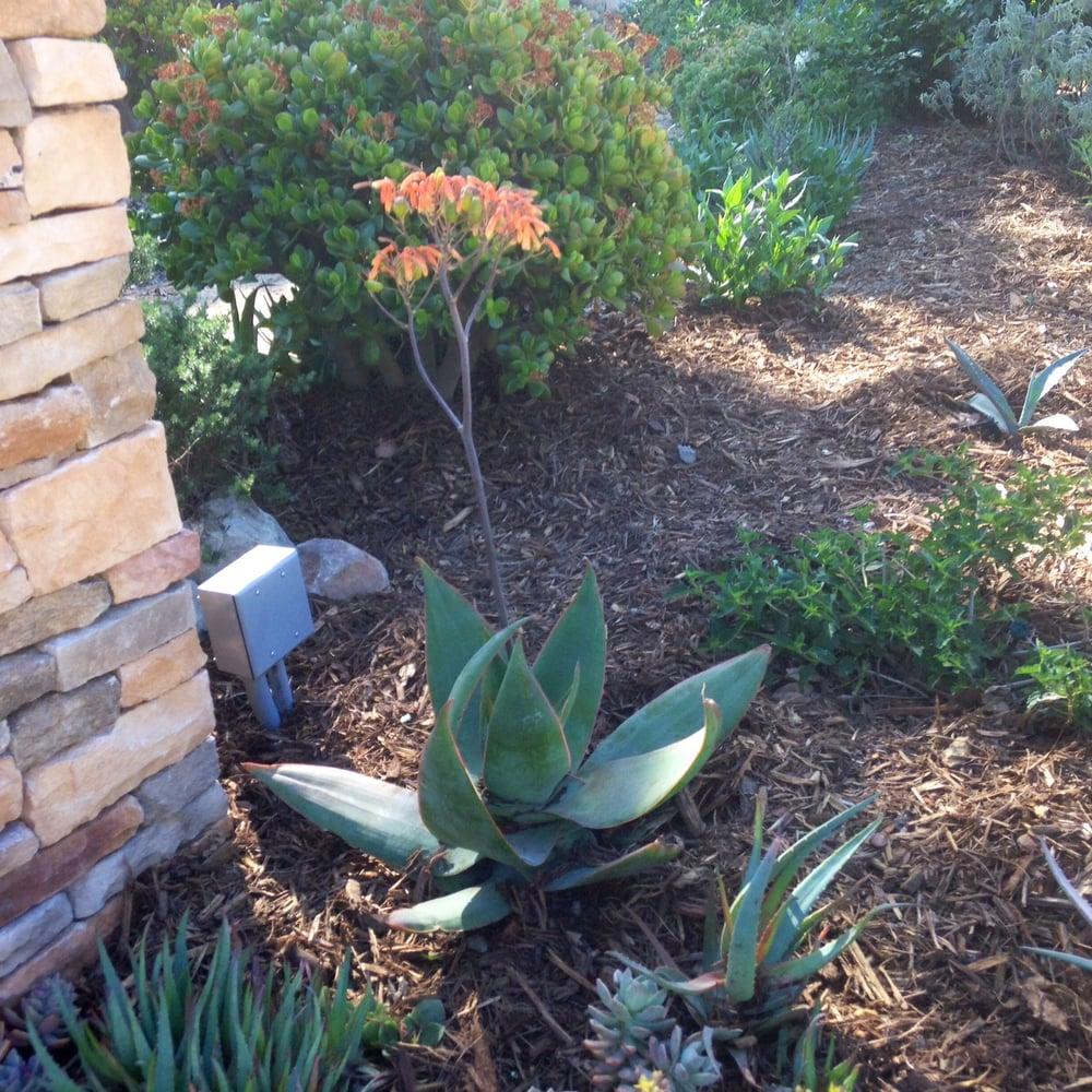 GardenWise Design: Thousand Oaks, CA