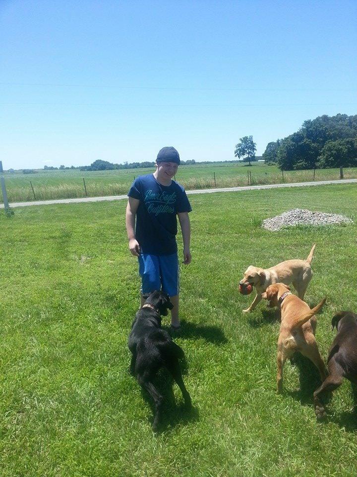 Sit Service Dogs: 519 Kilpatrick Rd, Ava, IL
