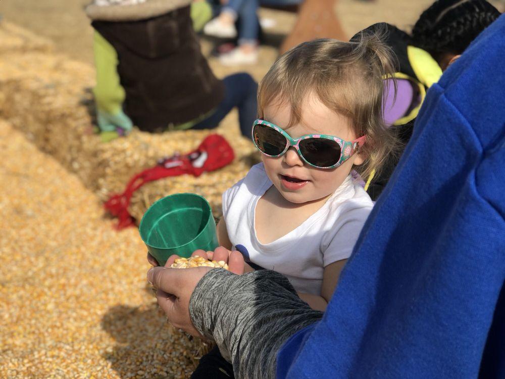 Middleton's Fall Festival: 1050 Pasco Kahlotus Rd, Pasco, WA
