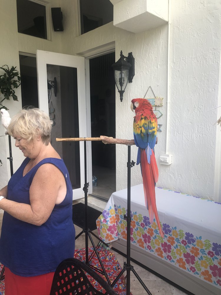 Linda the Parrot Lady