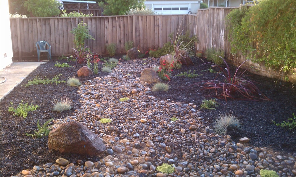 100 california drought tolerant garden we also reused these rocks from the front yards rock. Black Bedroom Furniture Sets. Home Design Ideas