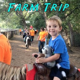 Sweet Berry Farm 94 Photos Amp 91 Reviews Attraction