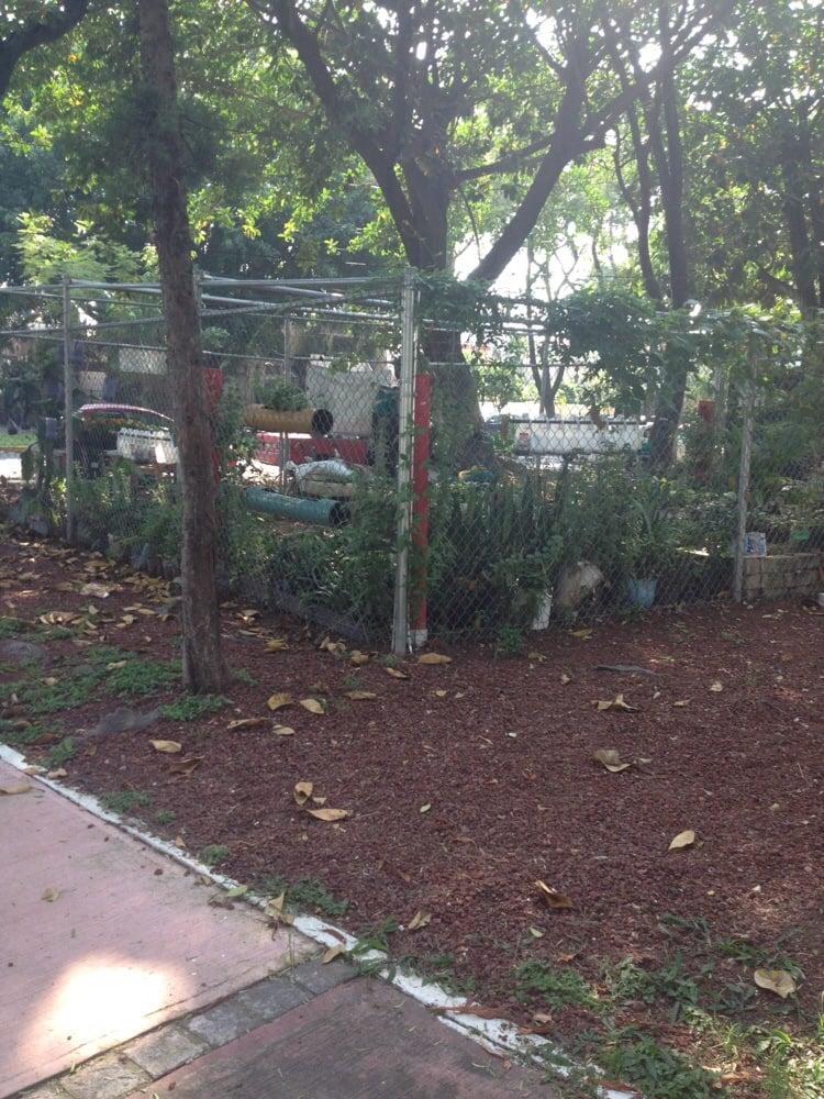 Parque monterrey parques y jardines av hidalgo for Parques y jardines