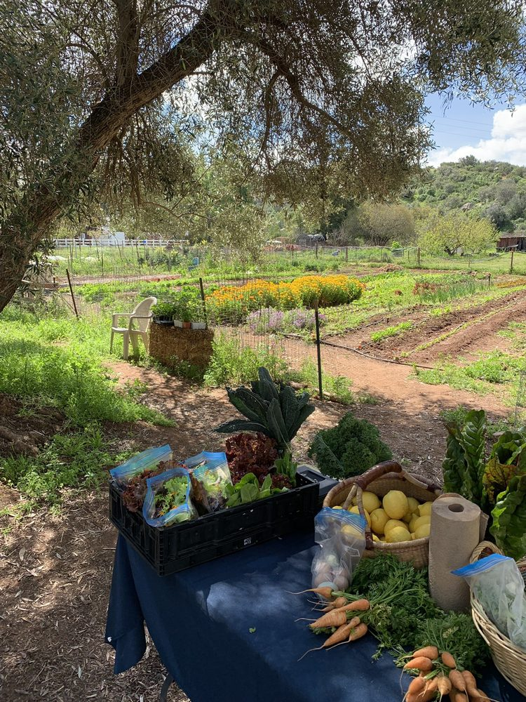 Healing From The Ground Up CSA: 450 Summerhill Ct, Alpine, CA