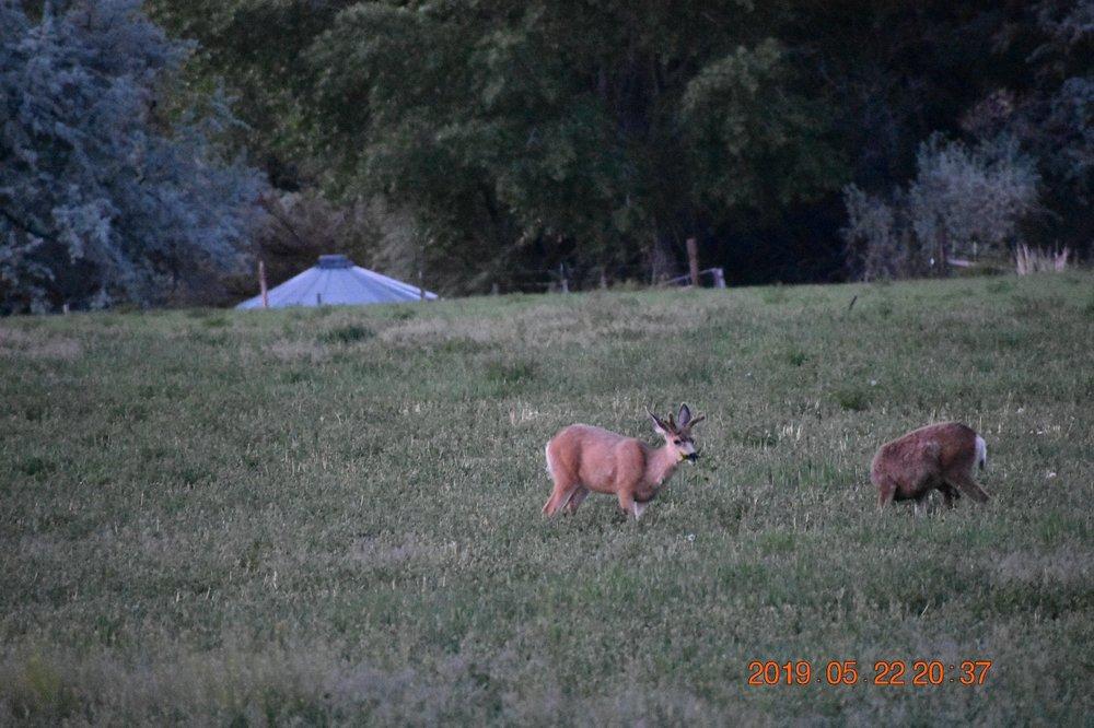 Salina Creek RV Camp