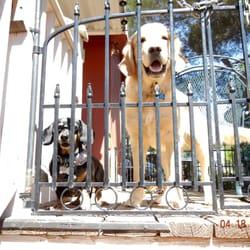 Dirty hairys pet wash doggie daycare 14 reviews pet groomers photo of dirty hairys pet wash doggie daycare sedona az united states solutioingenieria Gallery
