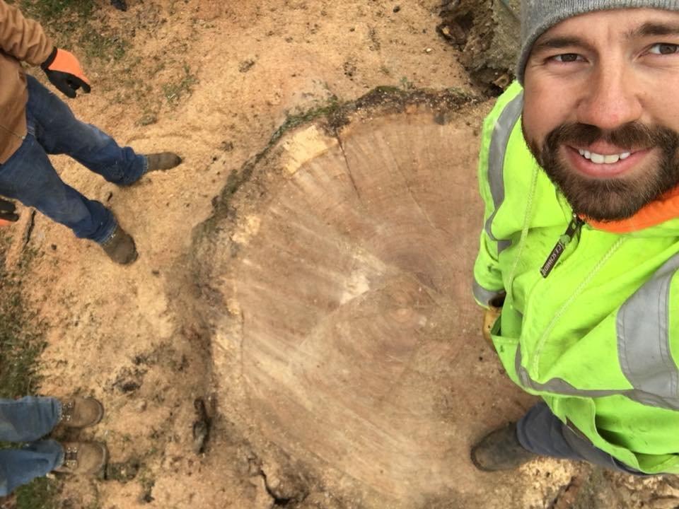 Wildcat Creek Tree Service: 3007 N 900th E, Lafayette, IN