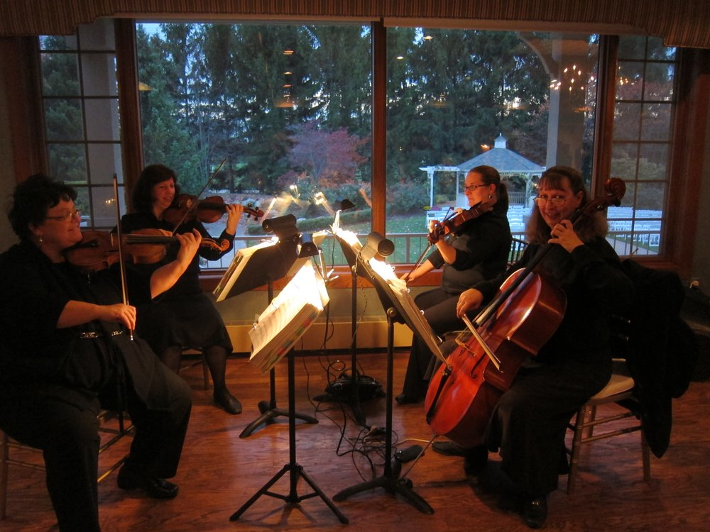 Rondo String Quartet: Troy, MI