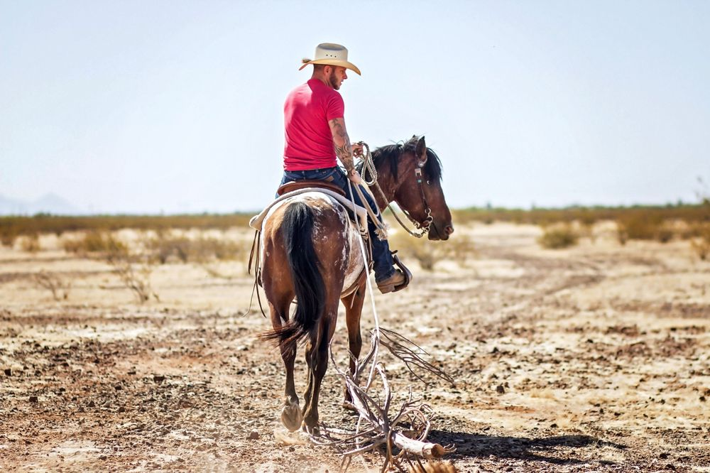 Full Circle Horse Training: 20944 W Jomax Rd, Wittmann, AZ