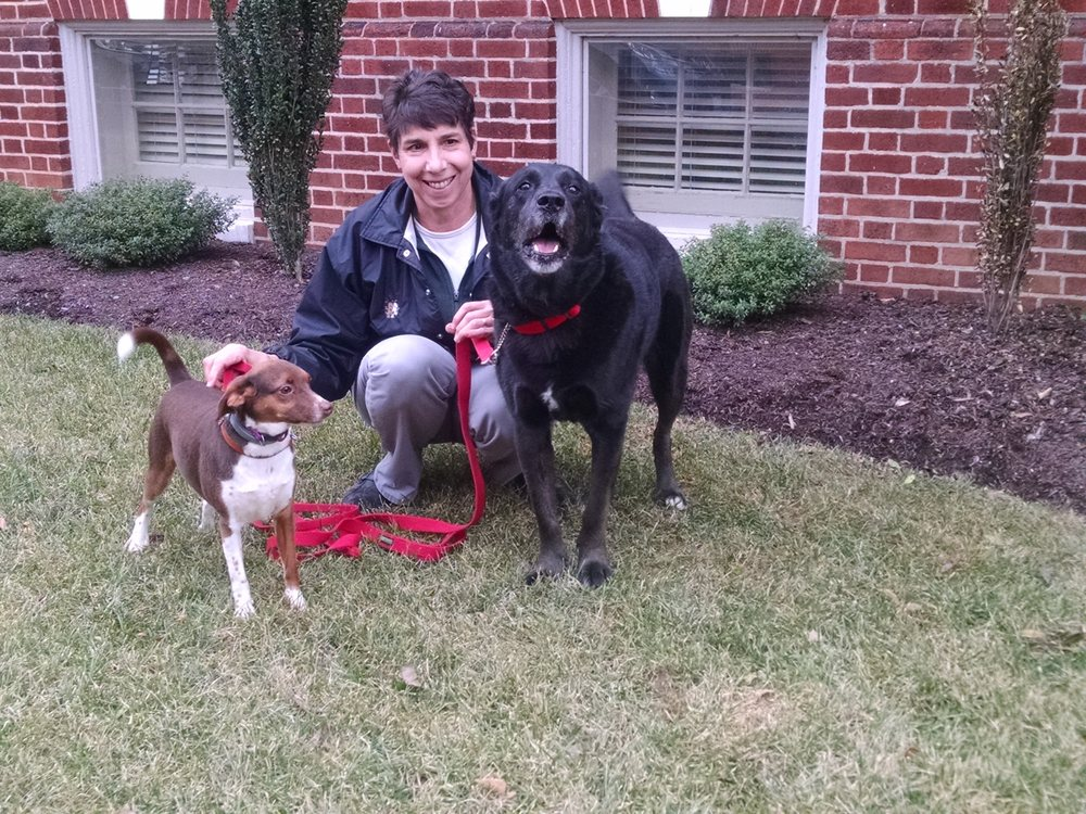 Dog Training Thurmont Md