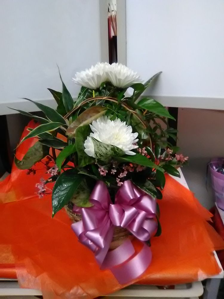 Shickshinny Floral & Gift: 22 W Union St, Shickshinny, PA