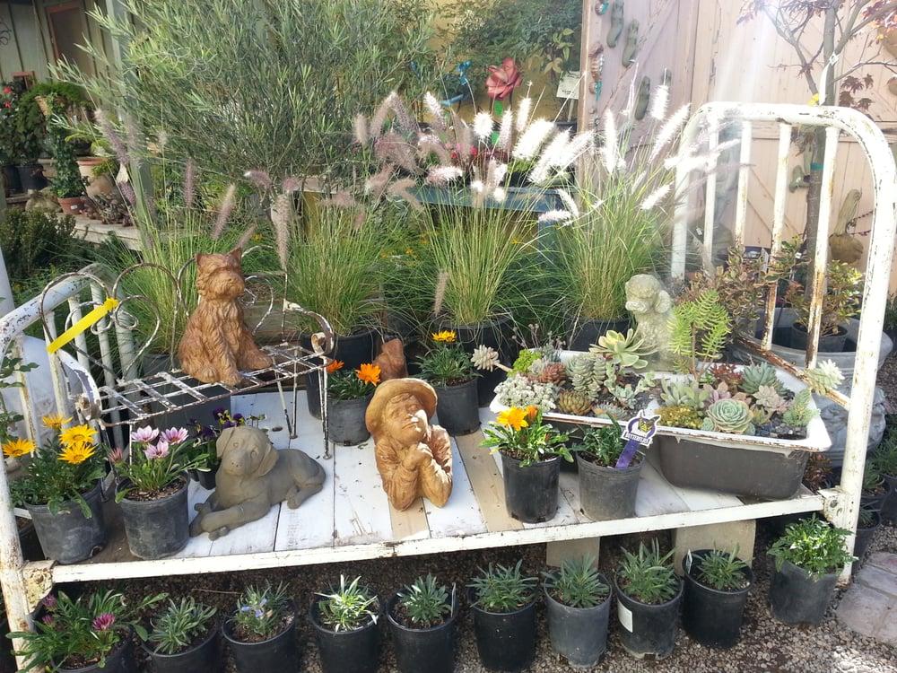 Old town garden center nurseries gardening 125 s broadway st santa maria ca united for Maria s garden center