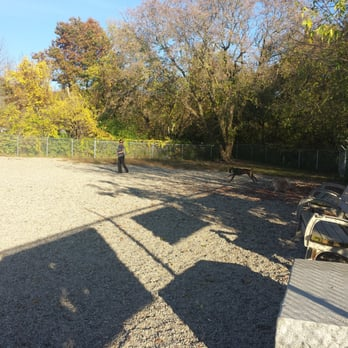 Dog Parks In Lowell Ma